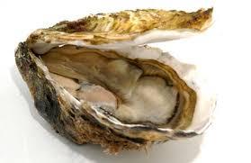 Bon de commande fêtes de fin d'année( huîtres,saumon,foie gras, vins, chocolat)